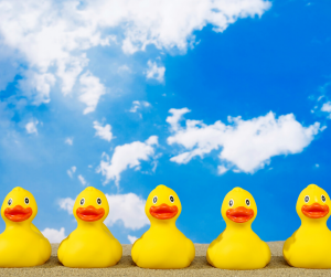 Line up your ducks for the 2020-21 jobs market